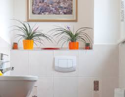 Plants In Bathroom Images by Exclusively Beautiful Bathroom Design Ideas For Small Spaces