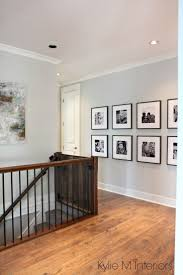 Dark Wood Trim Trgn Adcbf Within Best Color Walls Go Benjamin Moore Gray Owl Paint Colour Ideas Colors On Foyer Bm Stonehearth Dining Room