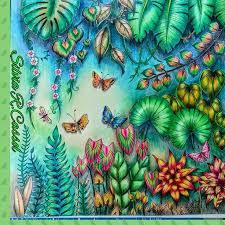 Magical Jungle Johanna Bradford By Silvia R