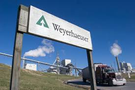 International Paper Is Buying Weyerhaeuser's Pulp Business | Fortune Used Semi Trucks Trailers For Sale Tractor Truck Paper Volvo 2007 Papers And Forms Intertional Dump Wwwtopsimagescom All About Kenworth T600 214 Listings Truckpaper Sales Il 62650 Byers Auctiontime Opens To Sellers Ahead Of Huge Endofyear Inventyforsale Best Of Pa Inc Mountain Lgmont Image Vrimageco Purchase Orders Invoices Related Documents For Equipment