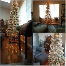 Plutos Christmas Tree Youtube by Living My Life Archives Sherri Connell