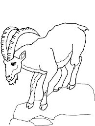 Mountain Goat Climb Down Hill Coloring Pages