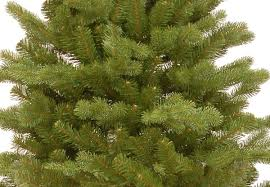 Silvertip Fir Christmas Tree Artificial by 3ft Hampton Spruce Potted Feel Real Artificial Christmas Tree
