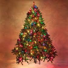 Douglas Fir Prelit Tree
