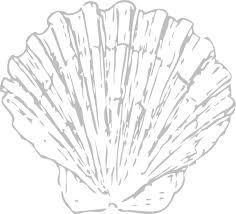 Seashell Clip Art at Clker vector clip art online royalty free & public domain