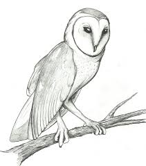 Barn Owl By Boomythemc On DeviantArt Country Barn Art Projects For Kids Drawing Red Silo Stock Vector 22070497 Shutterstock Gallery Of Alpine Apartment Ofis Architects 56 House Ground Plan Drawings Imanada Besf Of Ideas Modern Best Custom Florida House Plans Mangrove Bay Design Enchanted Owl Drawing Spiral Notebooks By Stasiach Redbubble Top 91 Owl Clipart Free Spot Drawn Barn Coloring Page Pencil And In Color Drawn Pattern A If Youd Like To Join Me Cookie