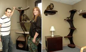 modern cat tower modern cat furniture with innovative design