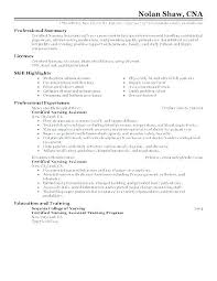 Cna Resume Example Of Examples Summary Resumes