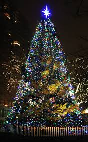 Popular Christmas Tree Species by Holiday Events In Boston 2016 Tree Lightings Santa More