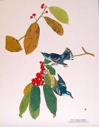 John Audubon Birds Of America