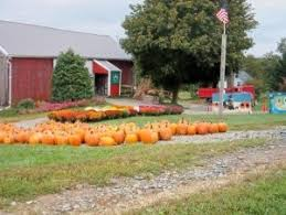 Pumpkin Farms In Southern Maryland 16 best falling for fall in maryland images on pinterest