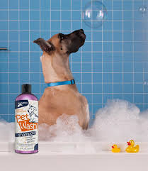 Big Dogs That Dont Shed Bad by How To Get Rid Of Dog Dandruff The Happy Puppy Site