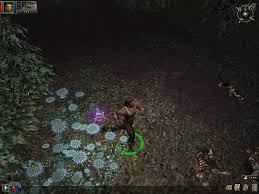 dungeon siege similar pixie dungeon siege wiki fandom powered by wikia