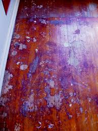 Clarke Floor Sander Edger Super 7r by Wood Floor Techniques 101 Page 8