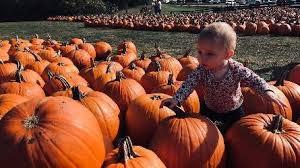 Pumpkin Farms In Channahon Illinois by Heritage Corridor Convention And Visitors Bureau Venue