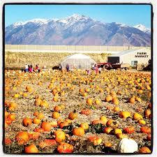 Pumpkin Patch Utah South Jordan by 118 Best Utah Images On Pinterest Beautiful Places Cars And Colors