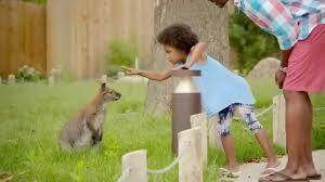 Brookfield Zoo Halloween Activities by Brookfield Zoo 2015 Summer Tv Commercial Youtube
