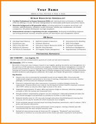 20 Awesome Resume Summary Example