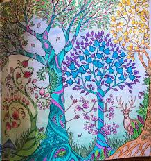 Johanna Basford Enchanted Forest Adult Colouring Entrance