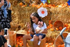 Redlands Fl Pumpkin Patch by Halloween 2016 Events For Kids In Miami Miami New Times
