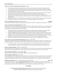 Sample Vice President Of Marketing Resume Samples Database