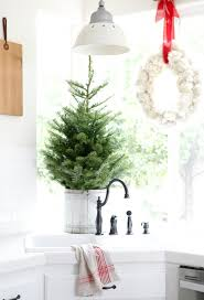 Place A Small Pine Tree In Bucket And Put On The Kitchen Counter Top