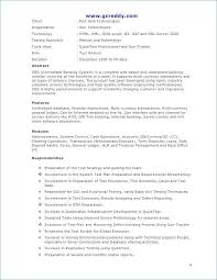 Software Engineer Resume Example Doc Summary For Examples Entry