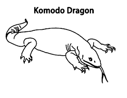 Komodo Dragon From Island Indonesia Coloring Pages