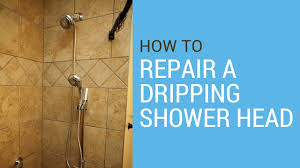Santec Faucet Handle Removal by How To Repair A Dripping Showerhead Youtube