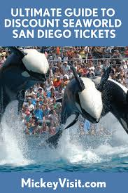 SeaWorld San Diego Tickets Deals 2019: Get SeaWorld Discount ... Best Pizza Coupons June 2019 Amazon Discount Code July Tips For Visiting Seaworld San Diego For Family Trips While Going To The Orlando Have Avis Promo Upgrade Azopt Card Mushybooks Payback Coupon Book App Online Codes Bath And Body Works Belk Seaworld Gold Coast Adventure Island Deals Can I Reuse K Cups Pelotoncycles Promo Codes 122