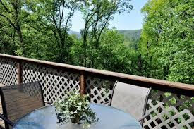 the vineyard boone nc heights on green street forest edge
