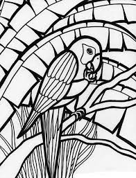 Amazing Parrot Coloring Page FREE Download
