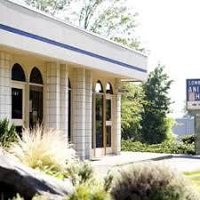 lombard animal hospital lombard animal hospital 30 reviews veterinarians 607 ne