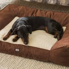 pooch planet dog bed