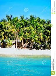 100 Playa Blanca Asia Rural De La Arena Con Las Casas Nativas Tpicas