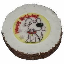 hatchwell geburtstag kuchen für hunde keks textur