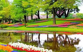 fleur et plante du lac photo gratuite jardin fleurs lac plantes image gratuite sur