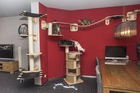 vitocat designer kratzbaum katzenzimmer für große katzen