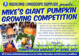 Atlantic Giant Pumpkin Growing Tips by Mikes Giant Pumpkin Growing Competition 2016 Auckland Landscape