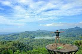 Wisata Kalibiru Jogja Spot Foto Panggung Terpopuler Di Kulonprogo