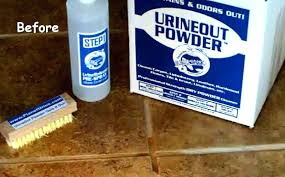 Ceramic Tile Haze Remover by Tile Grout Fort Care Removing Haze Ceramic U2013 Amtrader