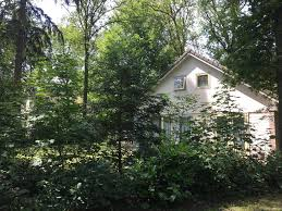100 House In Forest Beautiful House In The Forest Oudemirdum Bookingcom
