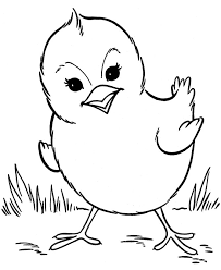 Spring Baby Chick Coloring Page Saad Sous