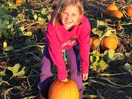 Pumpkin Picking Farms In Lancaster Pa by Where Near Philly To Pick Your Own Pumpkins Mapped