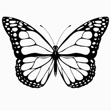 Science Clipart Coloring Pages For Free Download And Use