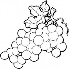 Grape Coloring Pages From