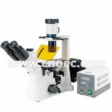 200x laboratory inverted fluorescence microscope halogen l