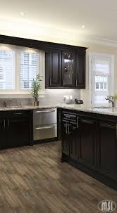 Nuvo Cabinet Paint Slate Modern by Moon White Granite Dark Kitchen Cabinets Kitchen Ideas