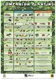 Fabulous Planning A Garden 17 Best Ideas About Garden Planning