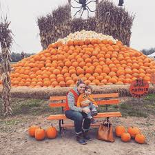 Rombachs Pumpkin Patch by Rombach On Topsy One